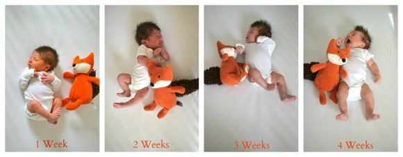 Harry's First Four Weeks