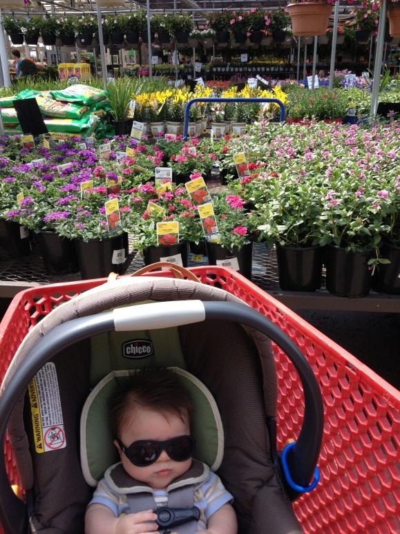 Gardening Harry