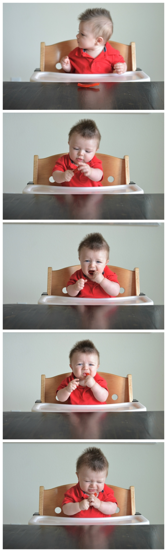 R.Simple Life | Five Month old meets a pepper