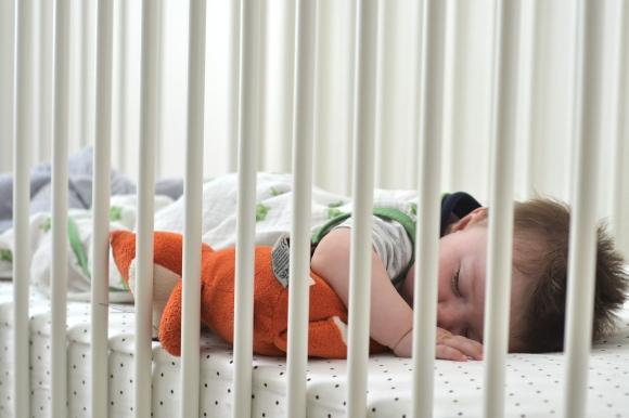 R.Simple Life | Sleeping Harry