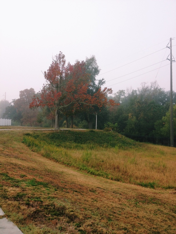 Fall in Mississippi | R.Simple Life