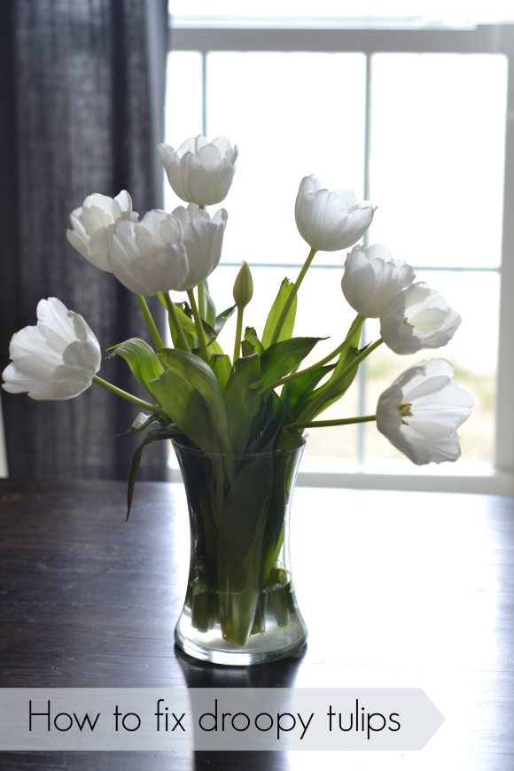 How to keep your tulips from drooping with a penny | R.Simple Life